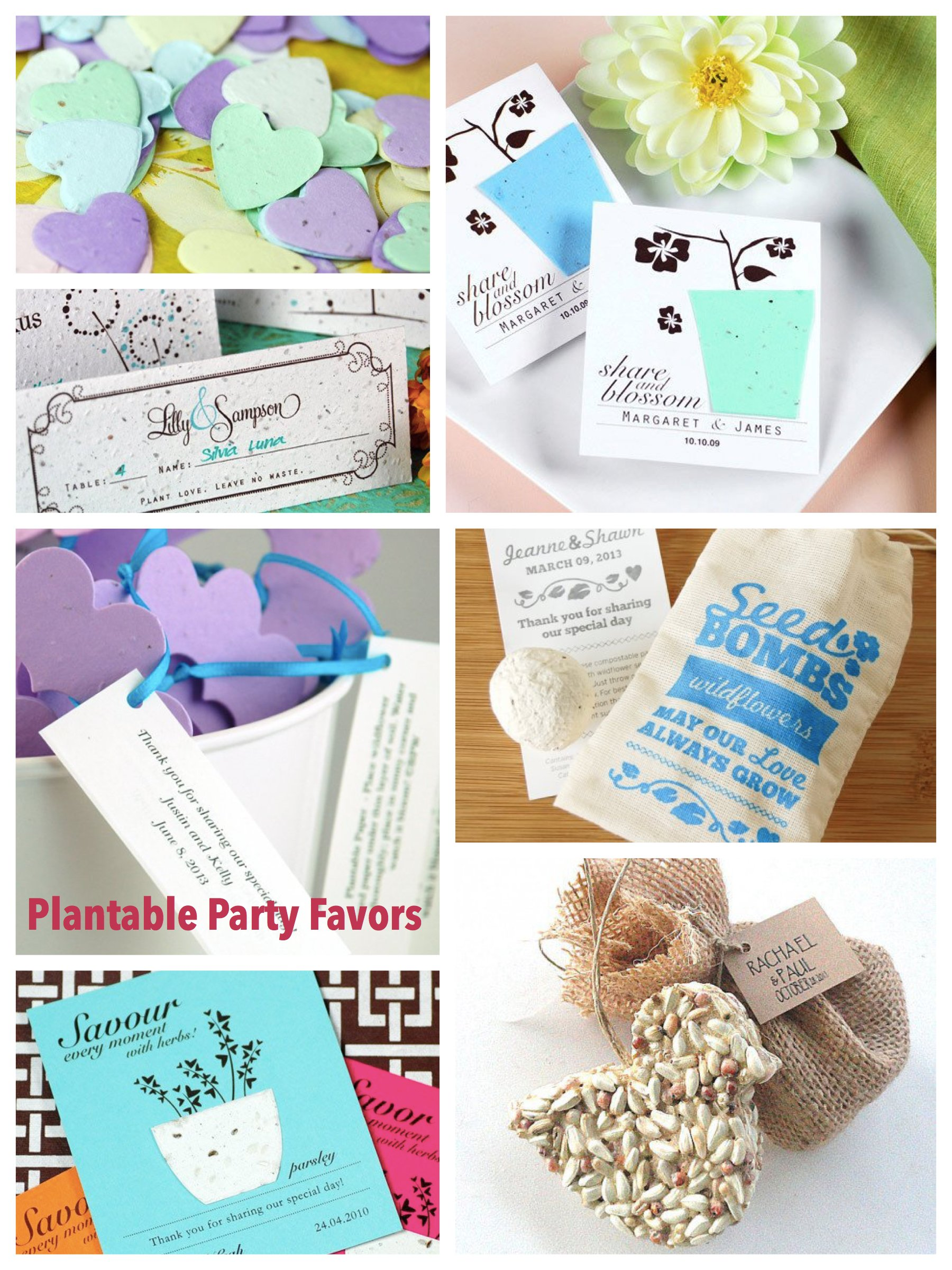 Plantable Seed Party Favors