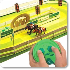 R/C Remote Control Horse Racing Challenge