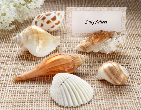 Shell Placecard Holders
