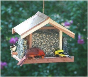 Perky-Pet Deluxe Cedar Feeder