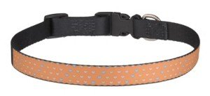 Multiple hearts orange dog collar