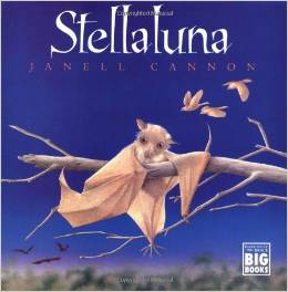 Stellaluna, Halloween Classroom Party Book, Halloween Reading