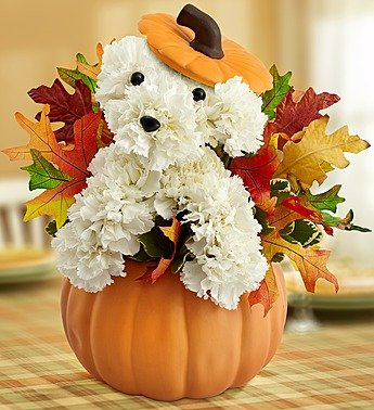 a-DOG-able for Fall Pumpkin Centerpiece