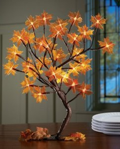 Lighted Maple Tree Branches