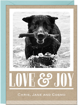 Love & Joy Holiday Photo Card