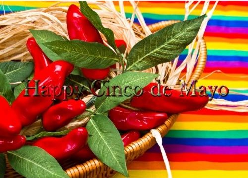 Cinco de Mayo Mexican Fiesta Kitchen Supplies