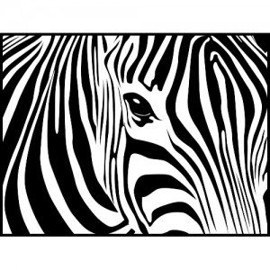 Zebra Print Theme Party Planning Ideas Supplies Birthday Party