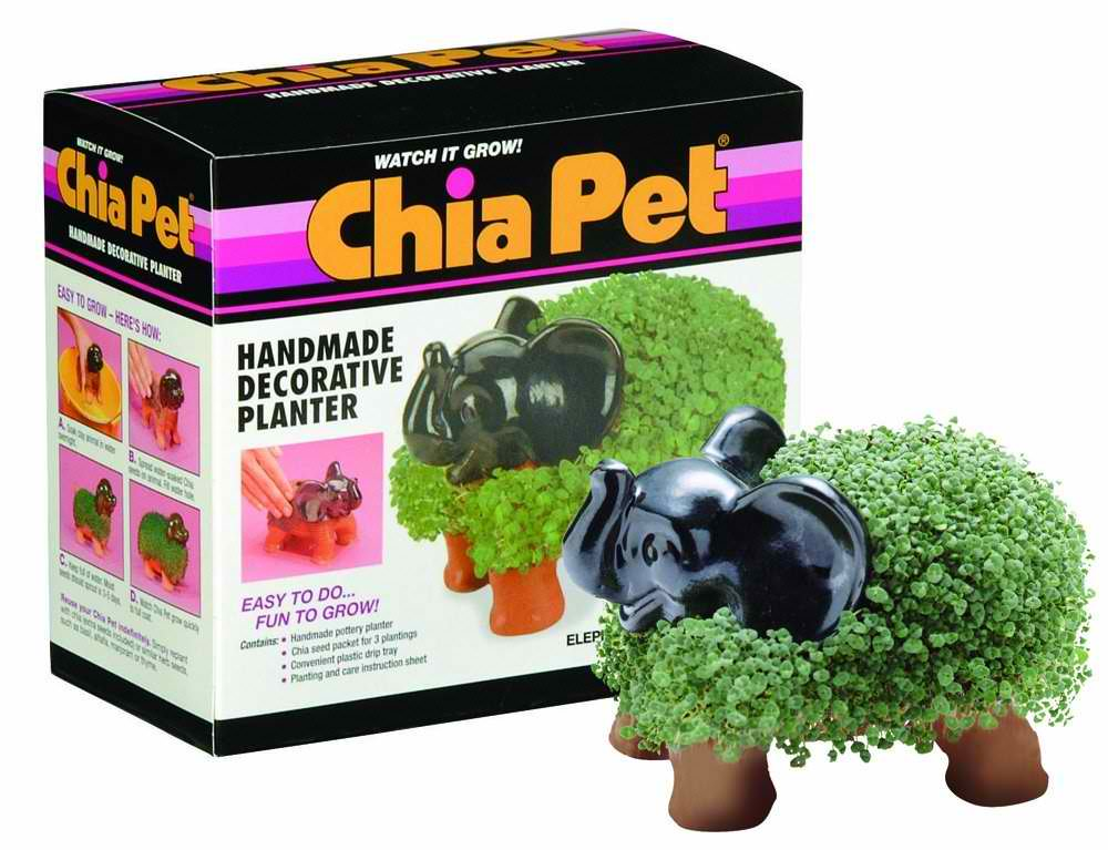 Elephant Chia Pet