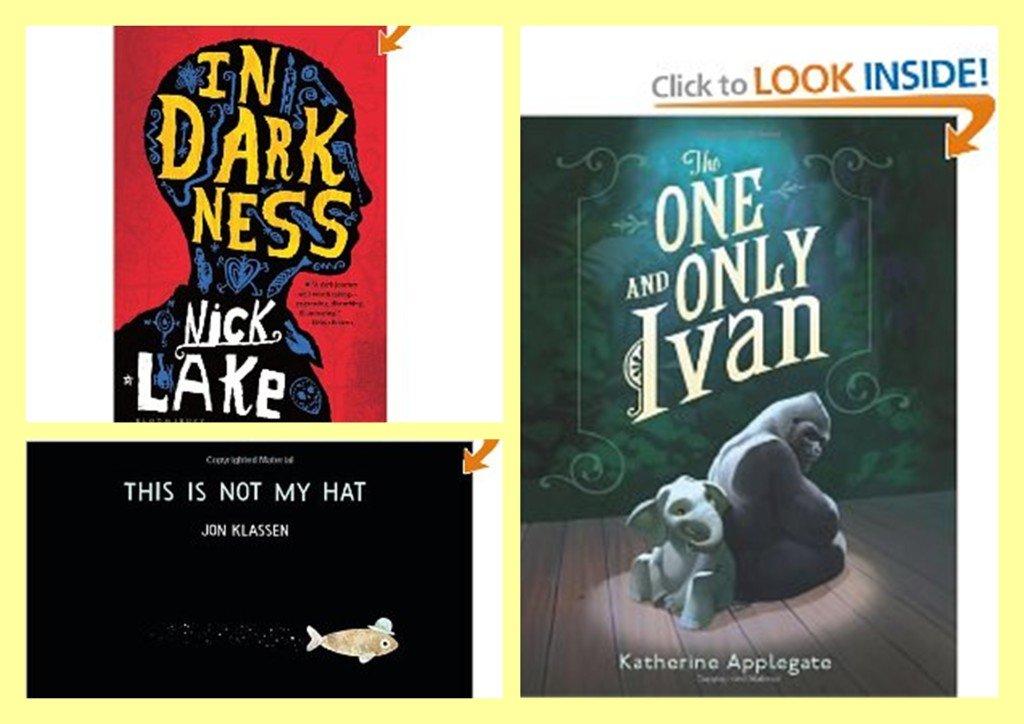 2013 Caldecott, Newbery, and Printz Award Winning Books!