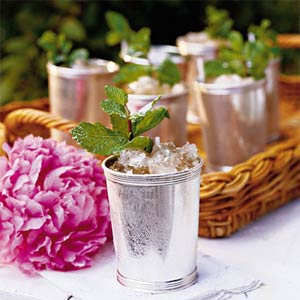 Mint Juleps for your Kentucky Derby Party, mint julep recipe