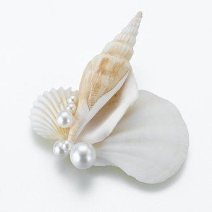 Lillian Rose Seashell Boutonniere