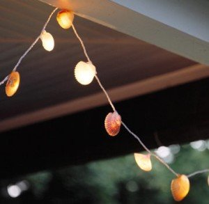 SeaShell String Lights - White Wire