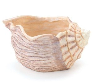 Seaside Seashell Planter : Candy Dish
