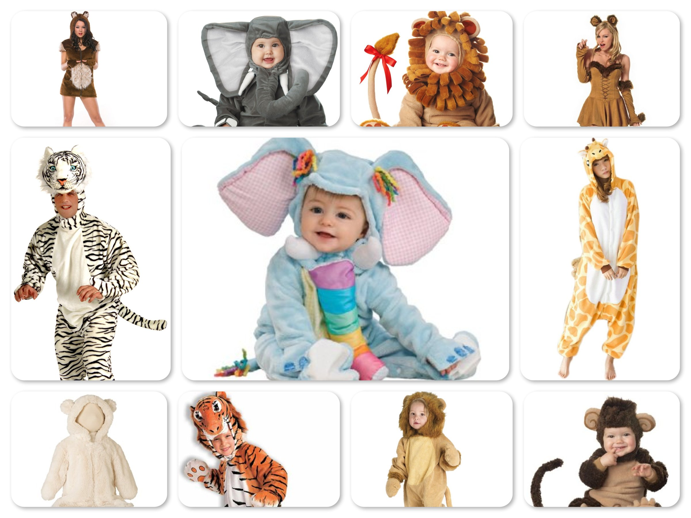 Lions and Tigers and Bears, Oh My! Costumes Matching Family Costumes