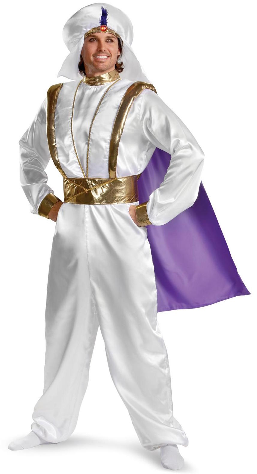 Disney Aladdin Costume