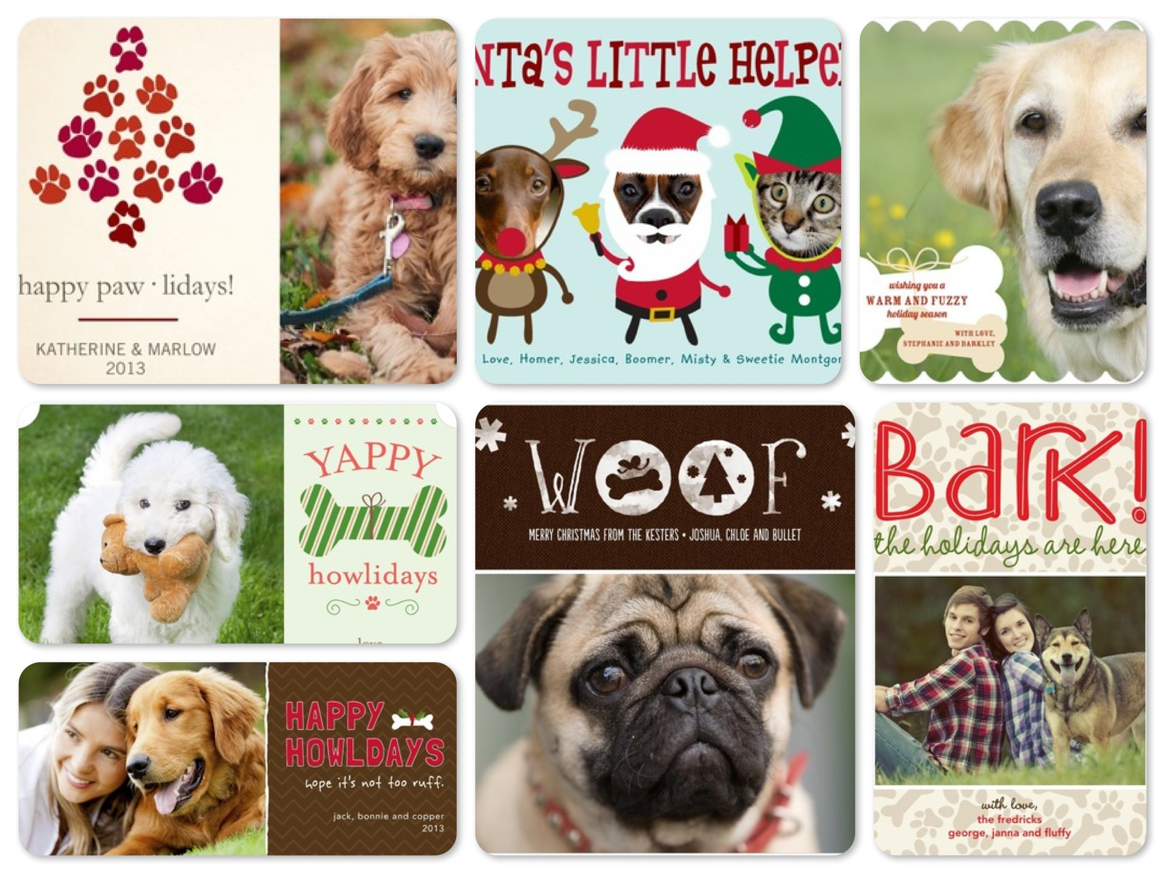 dog photo christmas card ideas - Pet Lover Holiday Cards