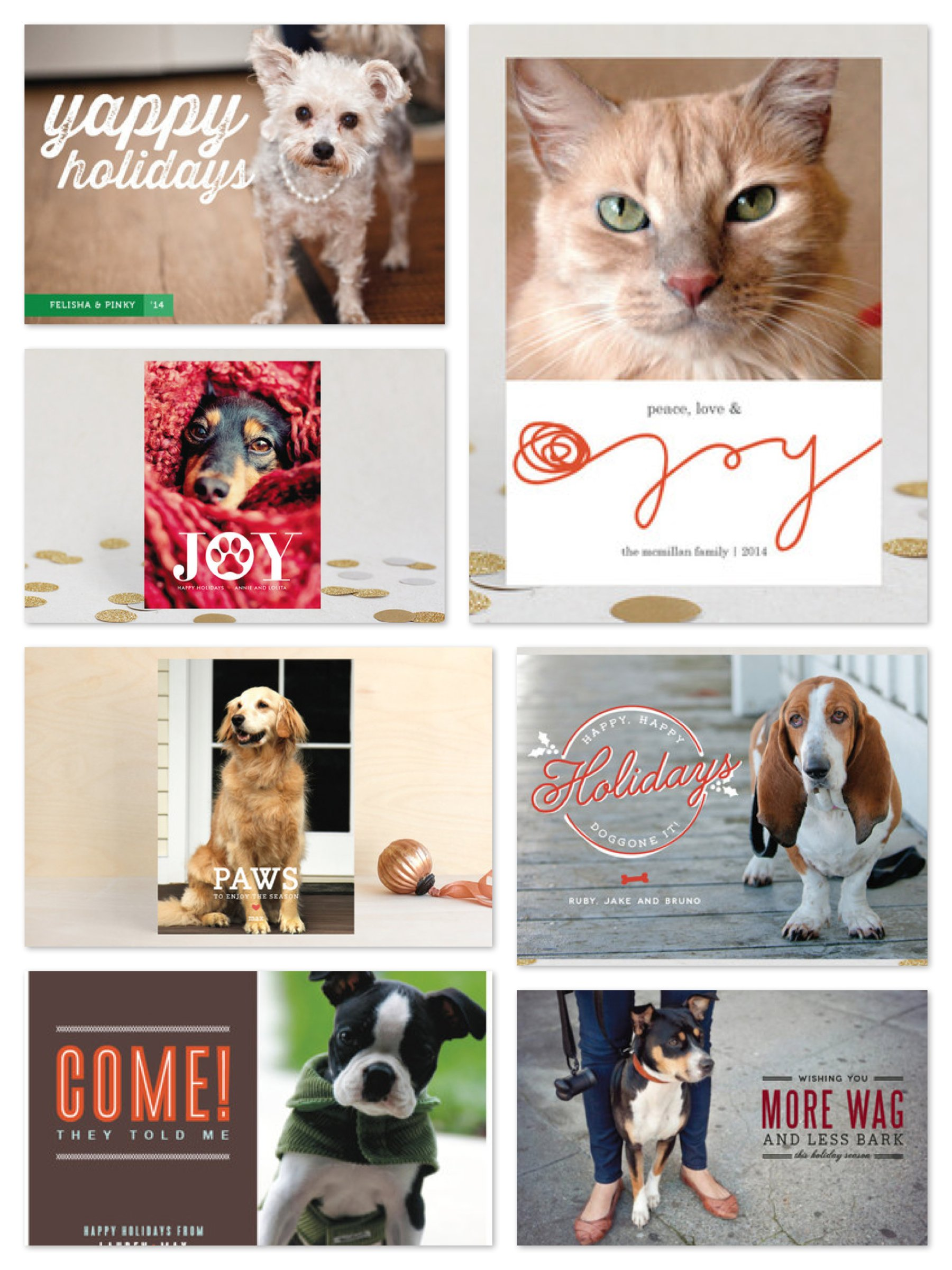 Pet Lover Holiday Photo Cards