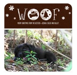 Tiger Lily in Woof Holiday Photo Card