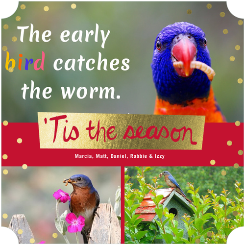 Early Bird Holiday Card Sale - Save 50% OFF Tiny Prints Cards