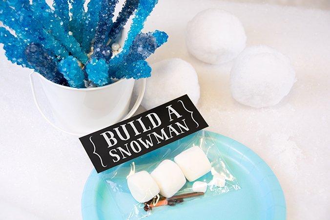 Frozen Party Build a Snowman Kit, Frozen Party Planning, Ideas & Supplies