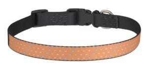 Multiple hearts orange dog collar