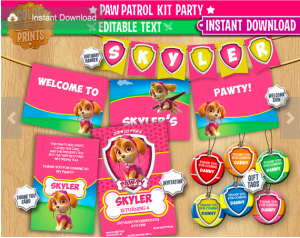 Paw Patrol Party Package Pink
