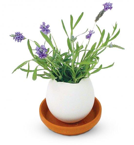 Lavender Eggling, Best Easter Hostess Gifts