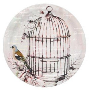 Pink bird cage paper plate