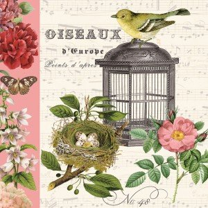 Vintage Bird and Birdcage Cocktail Napkins