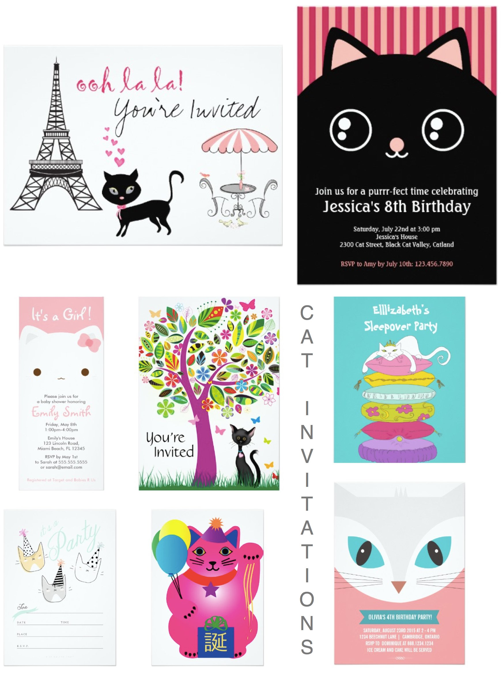 Celebrating Cat Cuteness :: Party Planning, Ideas & Supplies