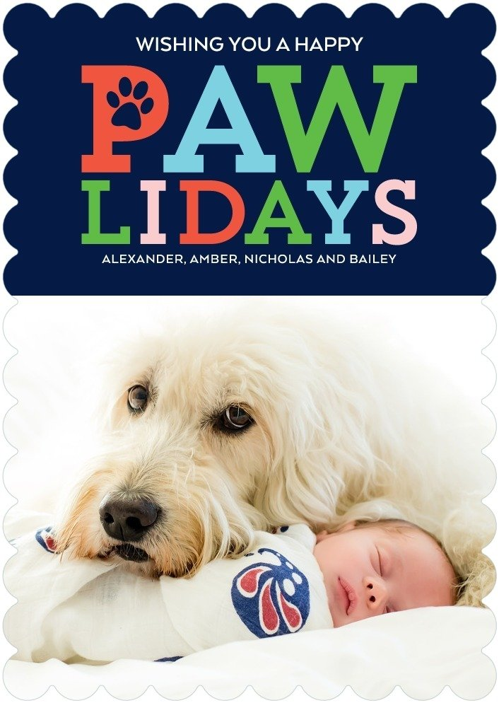 Pawliday Wishes Pet Holiday Cards
