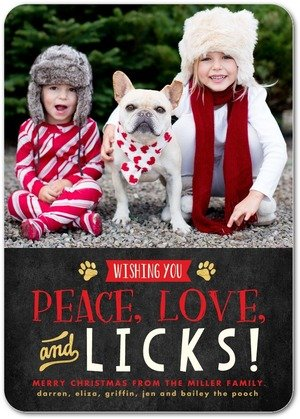 Paws for Applause Pet Holiday Cards