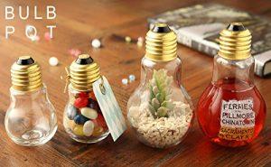 Light Bulb Pots