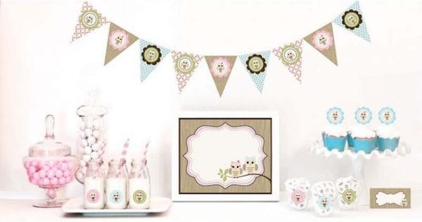Woodland Owl Baby Shower Party Kit