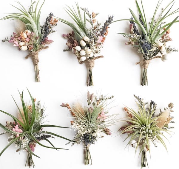 Air Plant Wildflower Boutonnieres