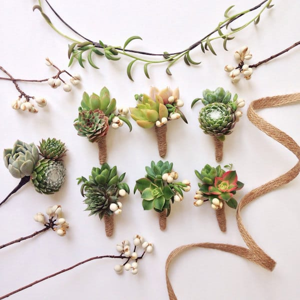Double Succulent Boutonnieres with Tallow Berry