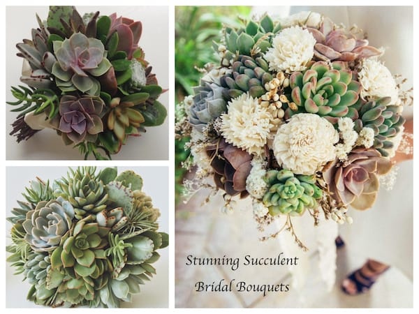 Stunning Succulent Bridal Bouquets