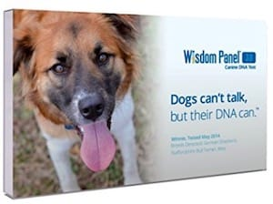 Wisdom Panel Dog DNA Test