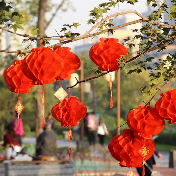 Chinese New YearPaper Lantern Decorations