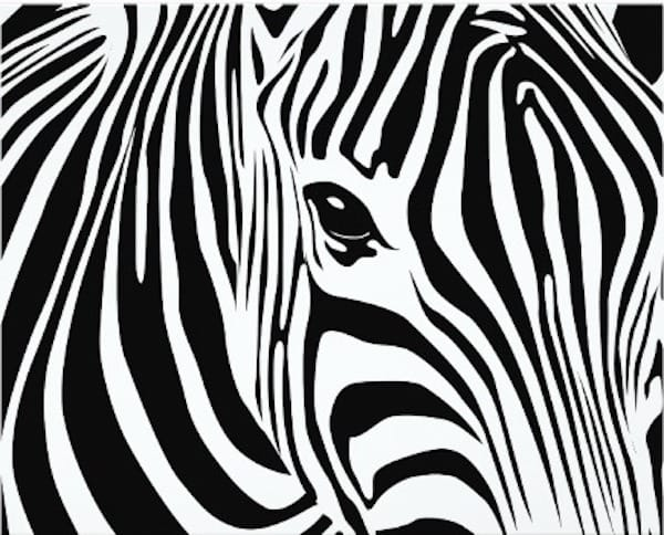 Zebra Theme Party Planning Ideas and Supplies
